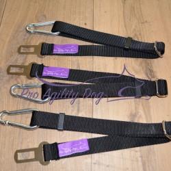 PAD Belt
