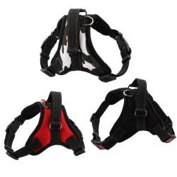 Adjustable Dog Harness